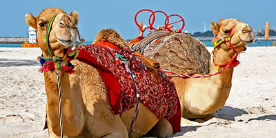 10 Things You Must See In The Middle East